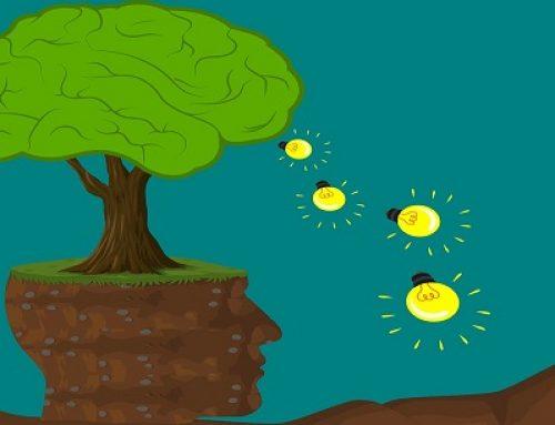 Quais são as influências do Mindset no ambiente corporativo?